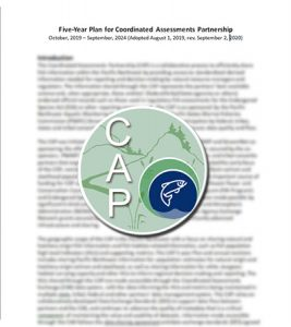Read more about the article Five-Year Plan for the Coordinated Assessments Partnership Updated Sept. 2020