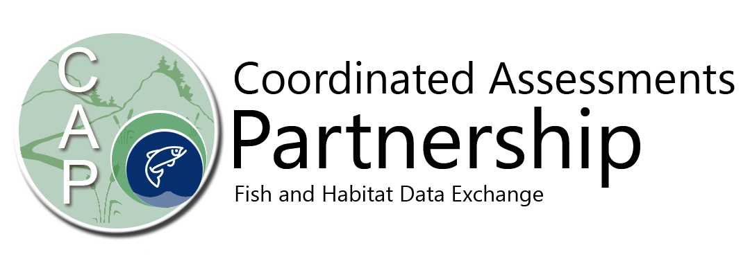 Logo for CAP with text