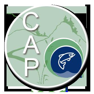Logo for CAP no text