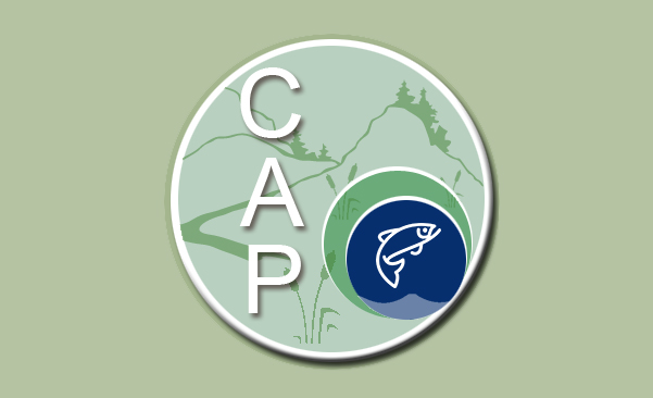 Icon for About CAP webpage