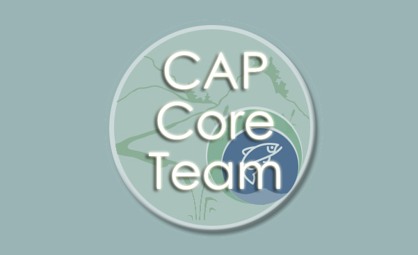 Icon for Cap Core Team webpage