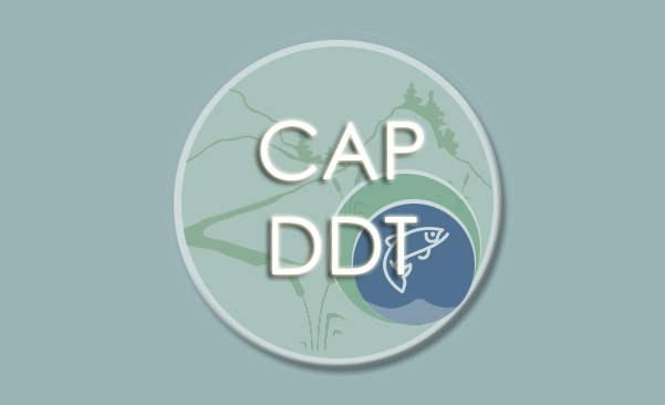 Icon for CAP DDT webpage