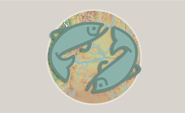 Icon for HSRG - Hatchery Reform webpage