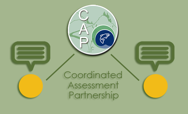 Icon for the Coordinated Assessments Partnership section of the website.