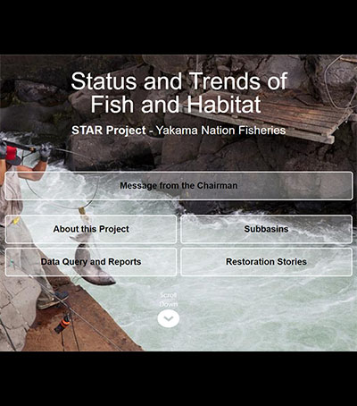 You are currently viewing Website Highlights Yakima Nation Salmon Recovery Efforts, Tracks Progress