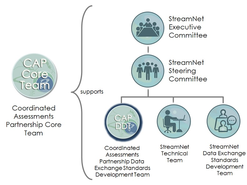 Diagram showing the relationships among the StreamNet Committees and Teams and the CAP Teams. The CAP Data Exchange Standards Development Team is on the bottom level with the other three teams .