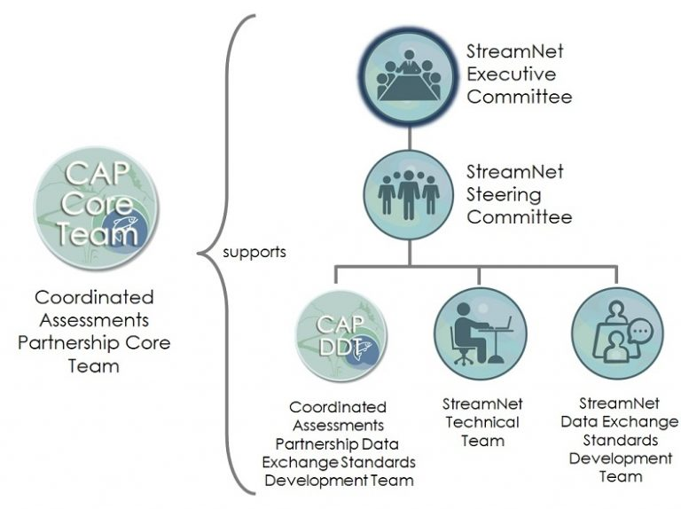 Diagram showing the relationships among the StreamNet Committees and Teams and the CAP Teams. The StreamNet Executive Committee is at the top of the hierarchy.