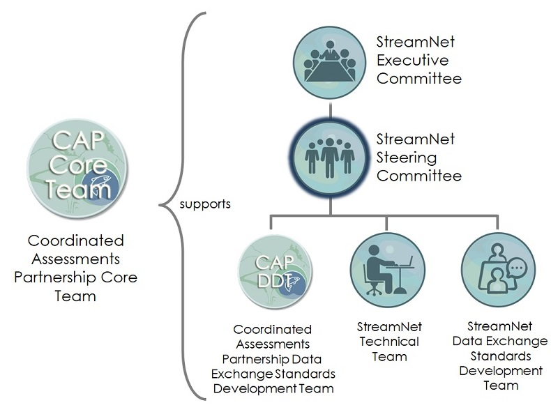 Diagram showing the relationships among the StreamNet Committees and Teams and the CAP Teams. The StreamNet Steering Committee is in the middle level below the StreamNet Executive Committee and above the Teams.