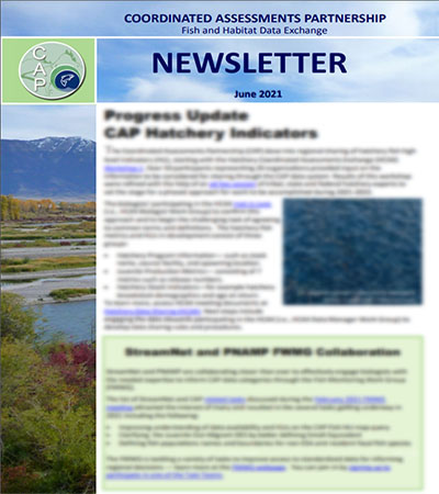 You are currently viewing CAP Newsletter, Issue 2